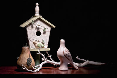 Birdhouse Photograph - Partridge And A Pear Tree by Tom Mc Nemar