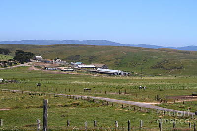 Pastoral Landscape Of Point Reyes California . 7d15958 Print by Wingsdomain Art and Photography