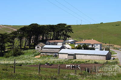 Pastoral Landscape Of Point Reyes California . 7d16047 Print by Wingsdomain Art and Photography