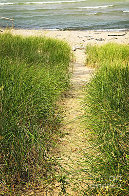 Grass Photograph - Path To Beach by Elena Elisseeva