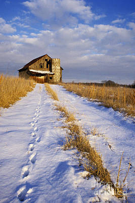Indiana Landscapes Photograph - Pathway To Shelter - Fs000412 by Daniel Dempster
