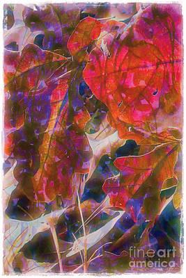 Patterns In Scarlet Print by Judi Bagwell