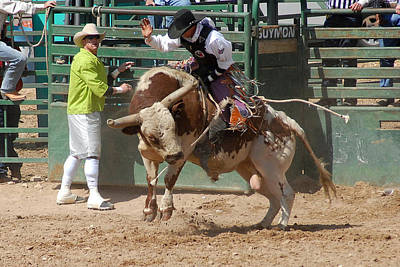 Of Rodeo Bucking Bulls Photograph - Pbr Bucking Bulls Guymon by Cheryl Poland