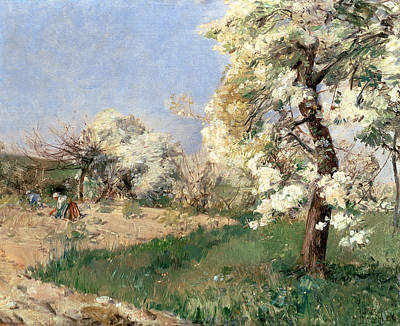 Country Lanes Painting - Pear Blossoms by Childe Hassam