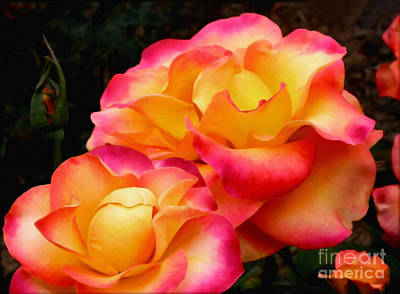 Colorful Roses Photograph - Perfect Moment - Rose by Kaye Menner