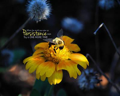 Flower Photograph - Persistence by Jai Johnson