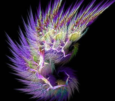 Fractal Photograph - Phoenix's Wing by Lourry Legarde