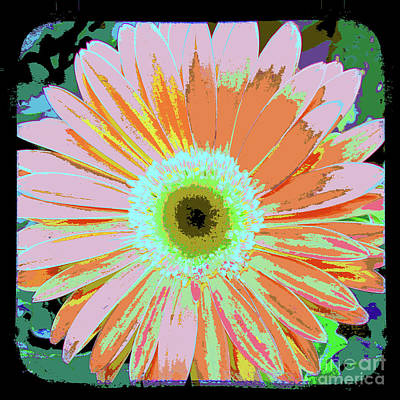 The View Mixed Media - Photography Art Floral by Ricki Mountain