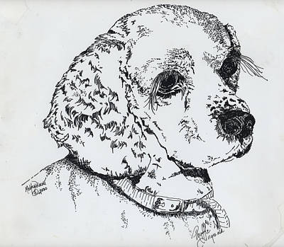 Cocker Spaniel Painting - Phyffle by Meldra Driscoll