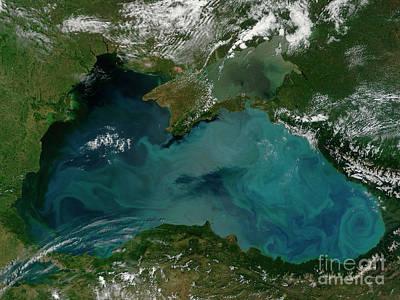Phytoplankton Bloom In The Black Sea Print by Stocktrek Images