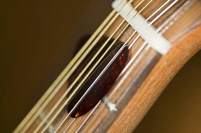 Music Photograph - Pick by C Ribet