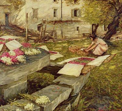 Window Bench Painting - Picking Stocks by Henry Herbert La Thangue