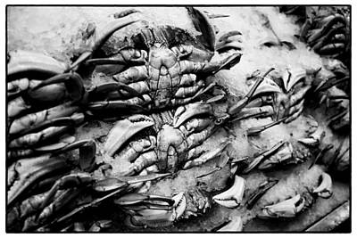 Pike Place Crab Print by Tanya Harrison