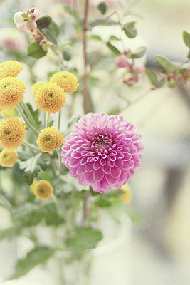 Pink Dahlia In Bouquet Of Flowers And Berries Print by Leentje photography by Helaine Weide