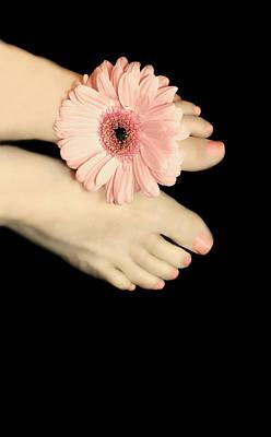 Pink Gerbera Daisy Print by Diana Lee Angstadt