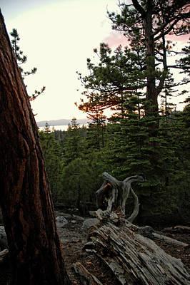 Lake Tahoe Photograph - Pink Skies by LeeAnn McLaneGoetz McLaneGoetzStudioLLCcom