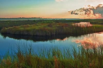 Pink Swamp Sunrise Print by Michael Thomas