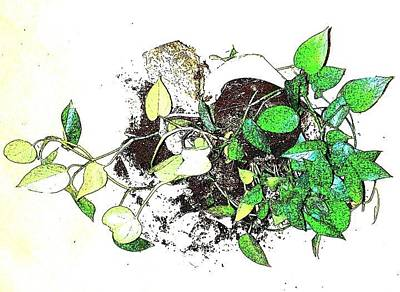 Mixed Media - Plant Falls by YoMamaBird Rhonda