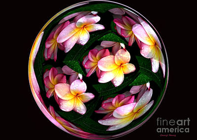 Manipulation Photograph - Plumeria Tile Ball by Cheryl Young
