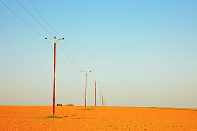 Telephone Poles Photograph - Poles In Field by Klaus W. Saue