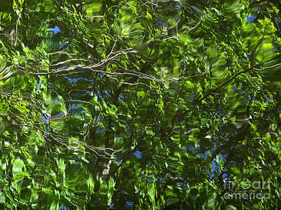 Pond Reflection 3 Print by Janeen Wassink Searles