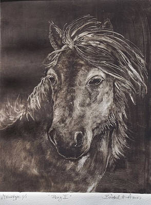Wild Horse Painting - Pony II by Barbel Amos