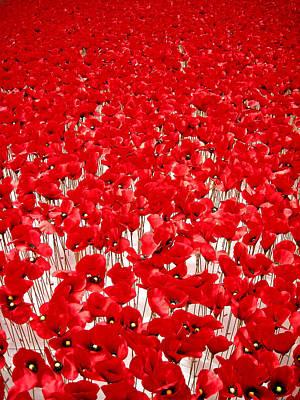 Poppy Meadow ... Print by Juergen Weiss