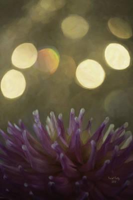 Bokeh Photograph - Porcupine by Trish Tritz