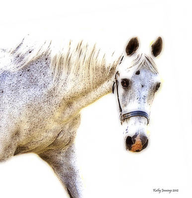 Portrait Of A Horse Series II Print by Kathy Jennings