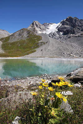 Postcard From Alpes Print by Mircea Costina Photography