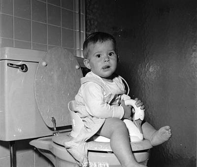 Domestic Bathroom Photograph - Potty Training by Yearwood