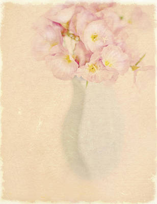 Pretty Primroses Print by Linde Townsend