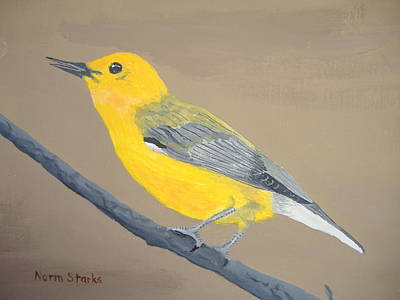 Prothonotary Warbler Original by Norm Starks