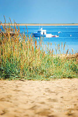Provincetown Photograph - Provincetown Ma by HD Connelly