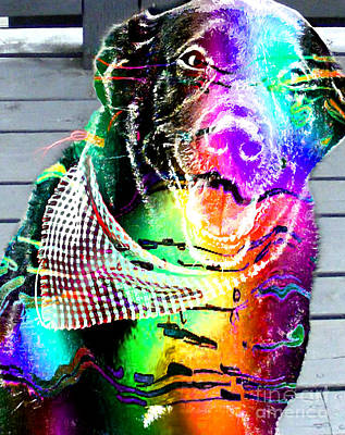 Psychedelic Black Lab With Kerchief Print by Barbara Griffin