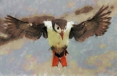 Puffin Digital Art - Puffin by Wade Aiken