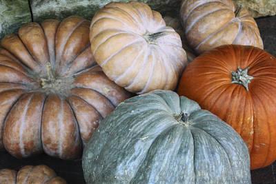Market Photograph - Pumpkin Patch by Joan Carroll