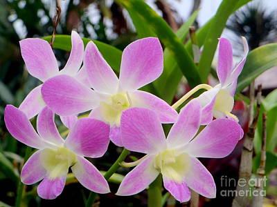 Purple Balinese Flower Print by Samantha Mills