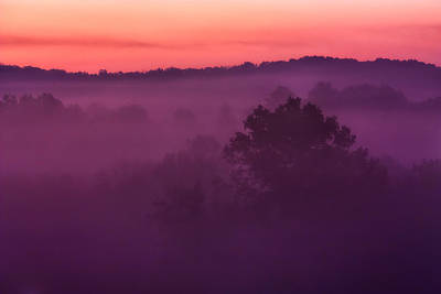 Purple Dawn Print by Matt  Trimble