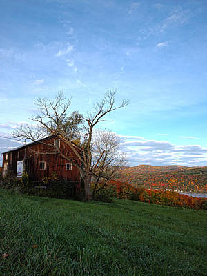 Finger Lakes Photograph - Purple Foot And Autumn Leaves by Joshua House