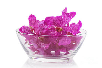 Photograph - Purple Orchid In Glass Bowl by Atiketta Sangasaeng
