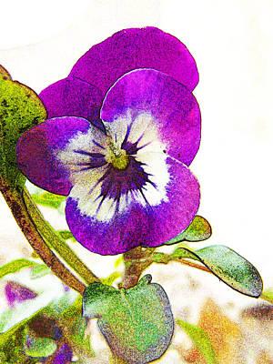 Purple Viola Print by Robin Hewitt