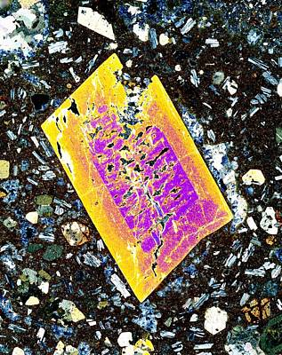 Pyroxene Crystal, Thin Section Print by Dirk Wiersma
