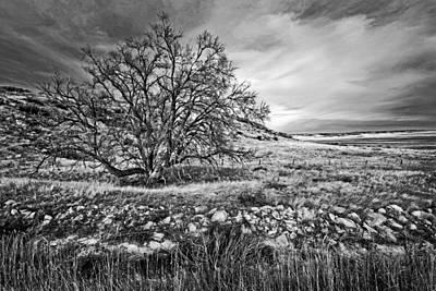 Quiet Place Original by James Steele