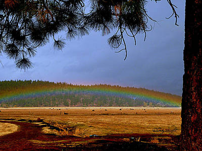 Rainbow Ridge Print by Cindy Wright