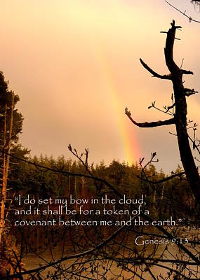 Inspirational Photograph - Rainbow Scripture Genesis 9 by Cindy Wright