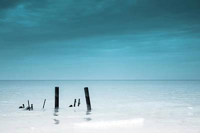 Rare Calm Print by Greg David