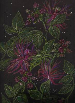 Raspberry Drawing - Raspberry Hunting by Dawn Fairies