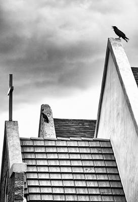 Black And White Photograph - Ravens No. 2 by James Bethanis