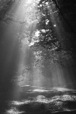 Epic Digital Art - Rays Of Light by Paul McGowan